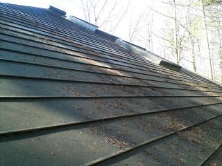屋根の枯れ葉下ろし